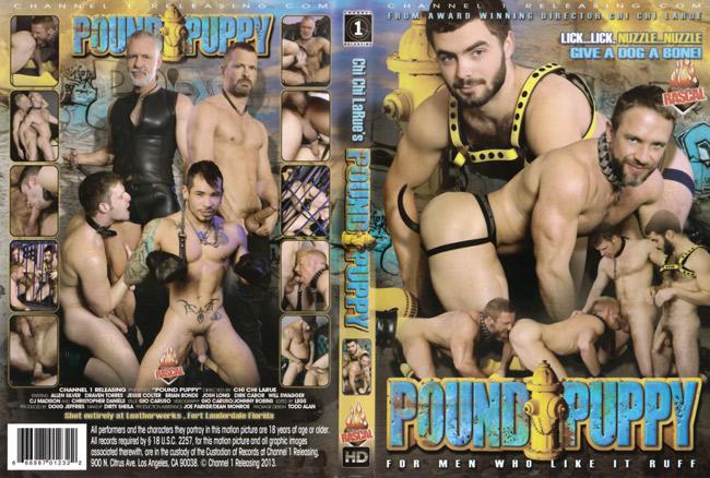 Pound Puppy