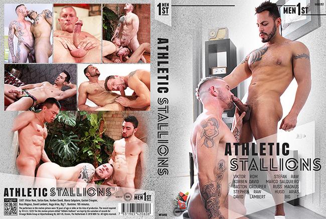 Athletic Stallions