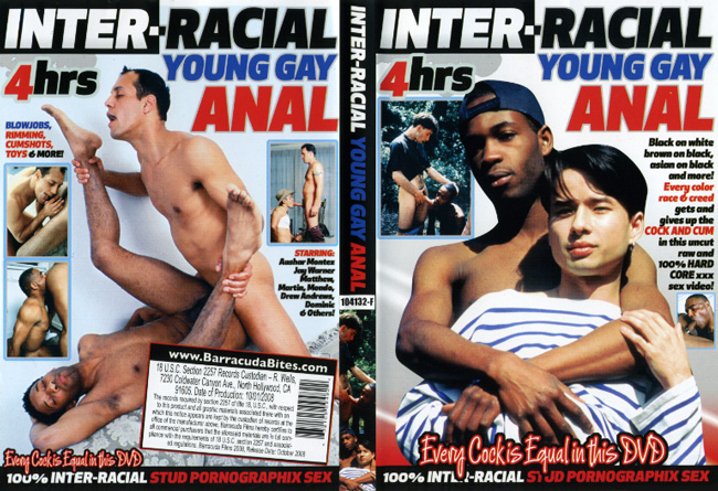 Inter-Racial Young Gay Anal
